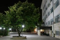 Нощна разходка